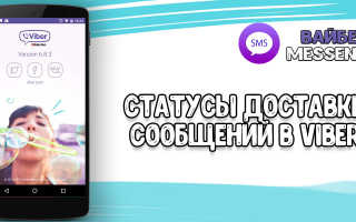 Статус доставки сообщений Viber: одна или две галочки